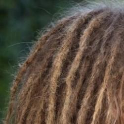 Une fille avec des dreadlocks