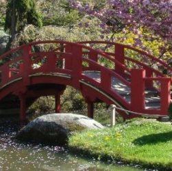 Le pont rouge dans le jardin japonais