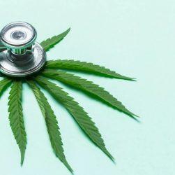 Un stéthoscope sur une feuille de cannabis