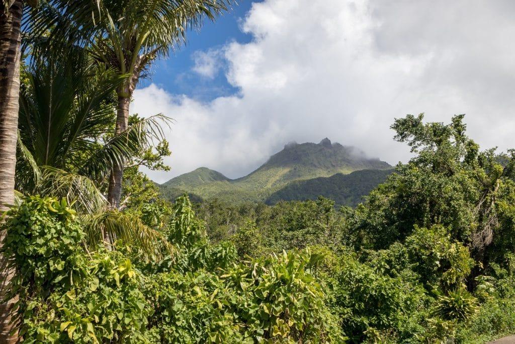 Les meilleures activités à faire en Basse-Terre en Famille
